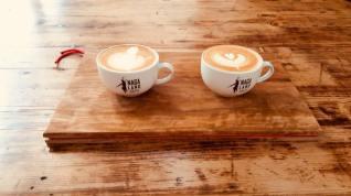 nagaland coffe 1