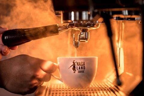 nagaland coffe n