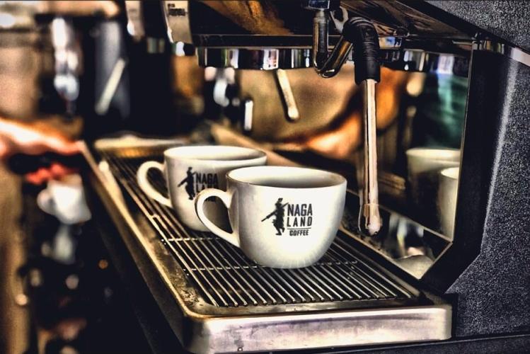 nagaland coffee nn